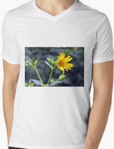 Beautiful sunny yellow flower macro. Mens V-Neck T-Shirt