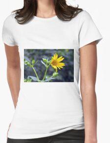 Beautiful sunny yellow flower macro. Womens Fitted T-Shirt
