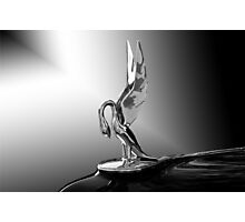Packard Hood Ornament 'Swan Song' Photographic Print
