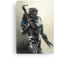 A busy Turian Canvas Print