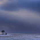 This Little Tree Is The Most Beautiful Tree In The World by Angelika  Vogel