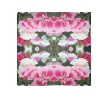 Zephyr Pink & White  Scarf