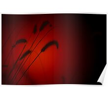 Grass Seed Sunset - Nature Background of Red Poster