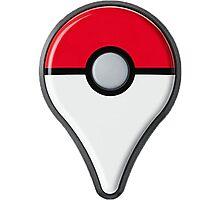 Pokemon Go Drop Pin Photographic Print