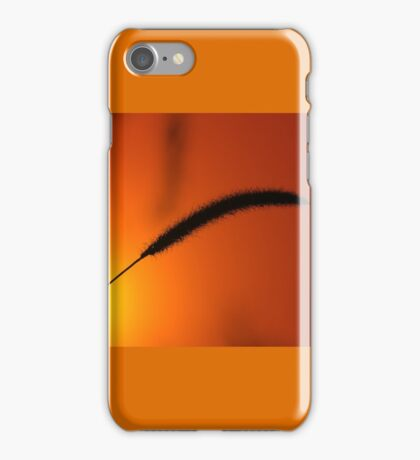 Grass Seed Sunset - Nature Background of Gold iPhone Case/Skin