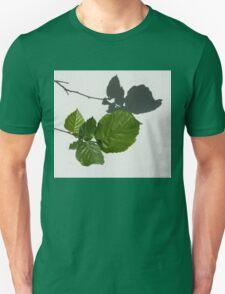 Sophisticated Shadows - Glossy Hazelnut Leaves on White Stucco - Horizontal View Left Down Unisex T-Shirt