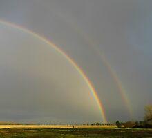Rainbows by WildestArt