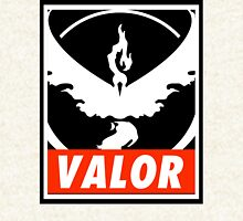 Valor Bar Zipped Hoodie