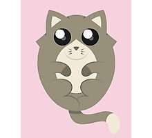 Cute Cat Meow in Pink Photographic Print