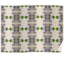 Forget Me Not Pattern Poster