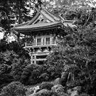 Japanese Tea Garden by Radek Hofman