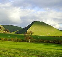 Thorpe Cloud from Bunster Hill by Rod Johnson