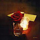 Rustic Romance by RC deWinter