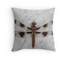 12 Spot Skimmer Resting Throw Pillow