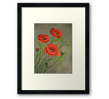 Poppies-3 Framed Print