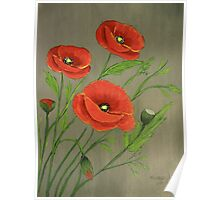 Poppies-3 Poster