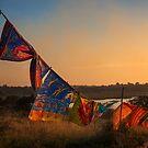 Mozambique Fabric by Craig Higson-Smith