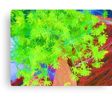 RainbowConfetti Farmers Market - Fresh Dill Canvas Print