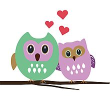 Owl couple Photographic Print