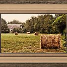 Bales along the Tree Line ... matted and framed by © Bob Hall