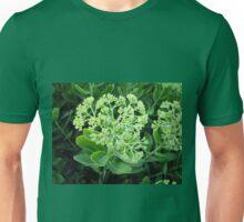 Sedum Unisex T-Shirt