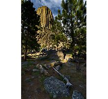 Devil's Tower with Trees Photographic Print