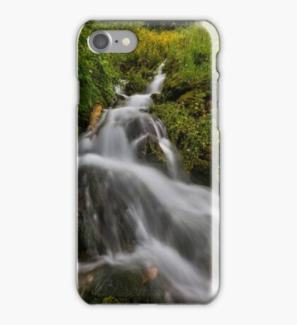 Water fall with moss and trees iPhone Case/Skin