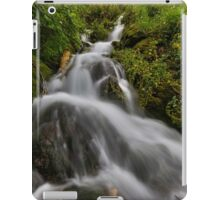 Water fall with moss and trees iPad Case/Skin