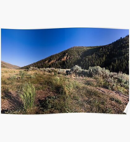 Hills with grass sagebrush and sky Poster