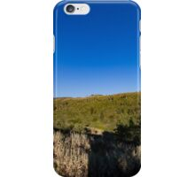 Quaking Aspen in the mountains iPhone Case/Skin