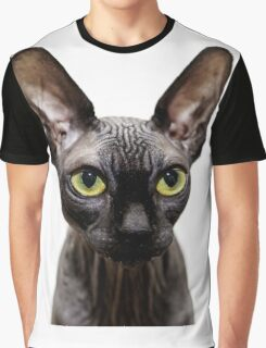 Beautiful sphynx cat with yellow eyes portrait on white background Graphic T-Shirt