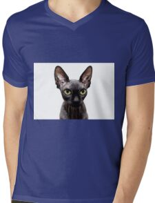 Beautiful sphynx cat with yellow eyes portrait on white background Mens V-Neck T-Shirt