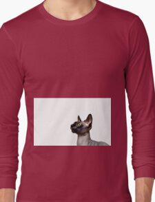Beautiful sphynx cat with yellow eyes portrait on white background Long Sleeve T-Shirt