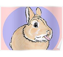 Cute Cheeky Bunny Rabbit Poster