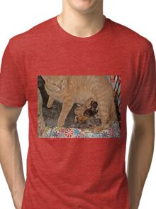 Proud Mama Tells Me To Admire Her Kittens Tri-blend T-Shirt
