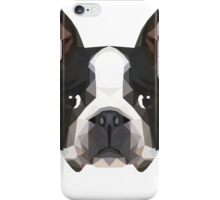 Crystalline Boston Terrier iPhone Case/Skin