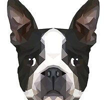 Crystalline Boston Terrier by Marshall Diveley