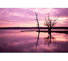A Beautiful Pink Sunset Photographic Print
