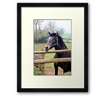 Chatting over the fence Framed Print