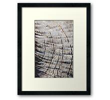 Leadwood - Textured Hardwood - Unique African Patterns Framed Print