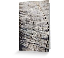Leadwood - Textured Hardwood - Unique African Patterns Greeting Card
