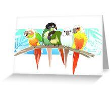 Green Cheek Conure Greeting Card