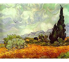 Landscape by Vincent Van Gogh Photographic Print