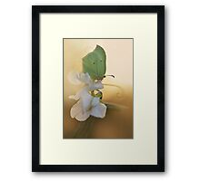 Green butterfly on the white sweet pea Framed Print