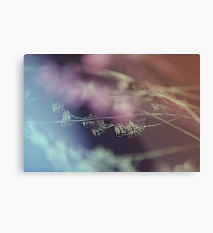 Floral-Abstract-1 Metal Print