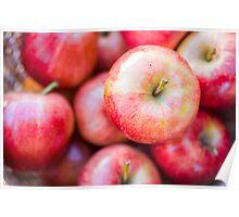 Sugar Sweet Summer Apples Poster