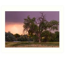 Thunderstorm In The Woods Art Print