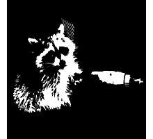 Tough Raccoon Photographic Print