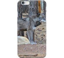 Alaskan Tundra Wolf iPhone Case/Skin