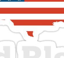 God Bless America - USA Pride Christian T Shirt Sticker